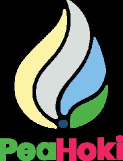 CÔNG TY CỔ PHẦN PEAHOKI VIỆT NAM logo