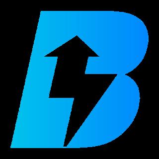 BIZZI VIETNAM logo