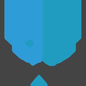 VAIS - Viet Nam AI System logo