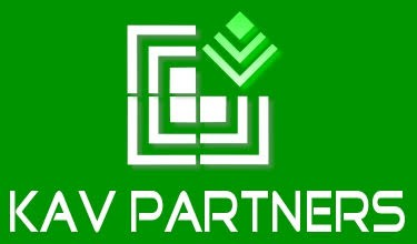CÔNG TY TNHH DỊCH VỤ KAV VIỆT NAM logo